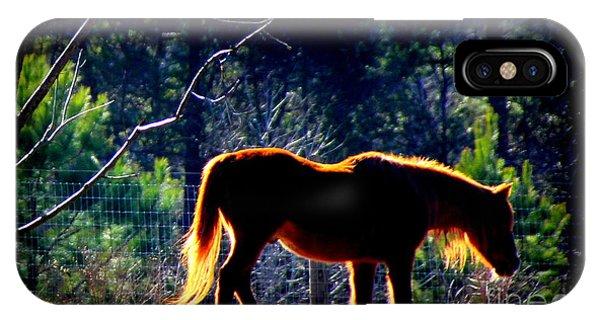 Zuni In The Sunlight IPhone Case