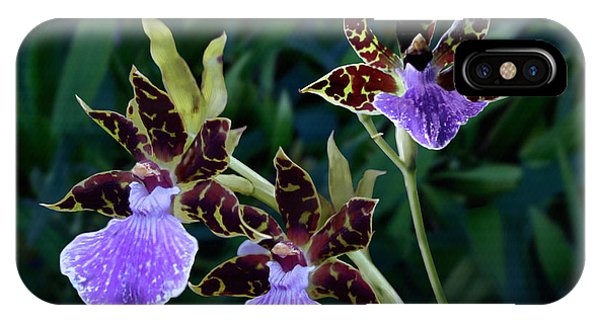 Zygopetalum Orchid IPhone Case