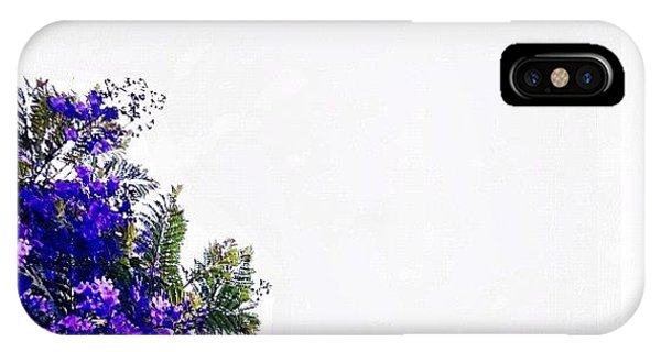 Scenic iPhone Case -  Corner Bouquet by Julie Gebhardt