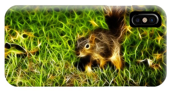 - Fractal - Pointer - Robbie The Squirrel IPhone Case