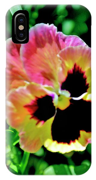 Pink And Yellow Pansy IPhone Case