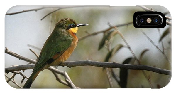 African Bee Eater IPhone Case