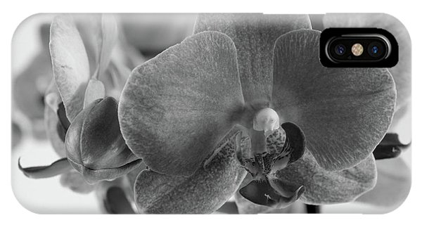 Black And White Orchid IPhone Case