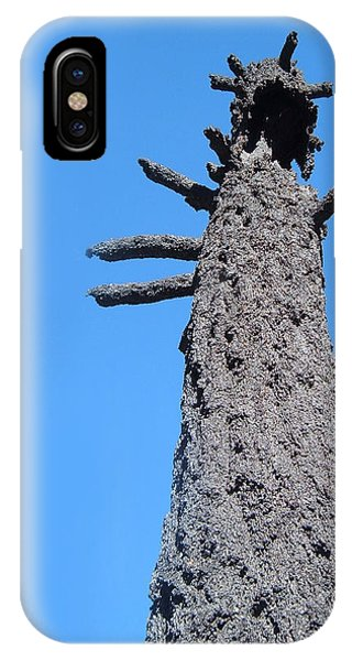 Death Valley iPhone Case - Burned Trees 3 by Naxart Studio