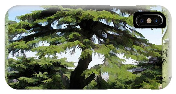 Do-00512 Cedar Forest IPhone Case