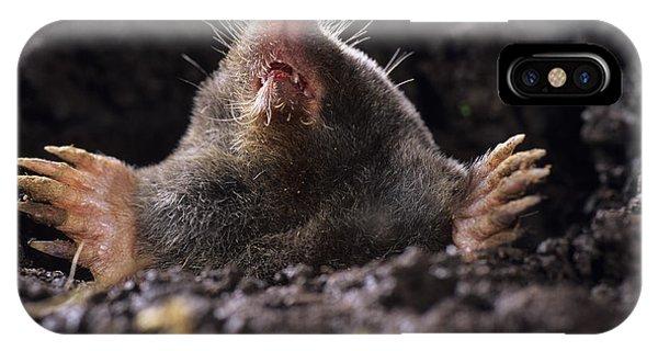 European Mole Phone Case by David Aubrey