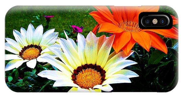Garden Daisies IPhone Case