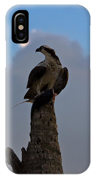 Osprey With Catch IPhone Case