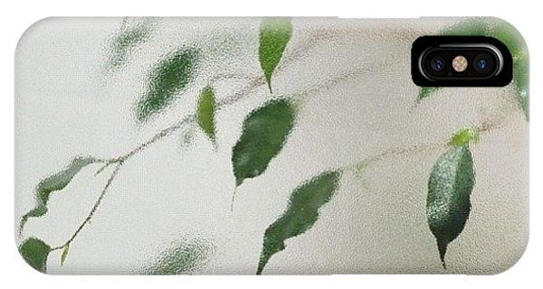 View iPhone Case - Plant Behind Glass by Matthias Hauser
