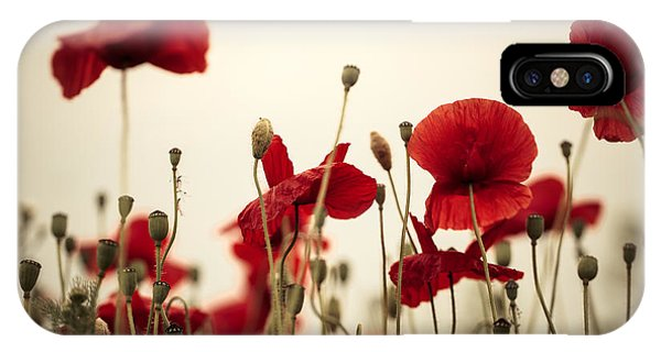 Petals iPhone Case - Poppy Flowers 03 by Nailia Schwarz