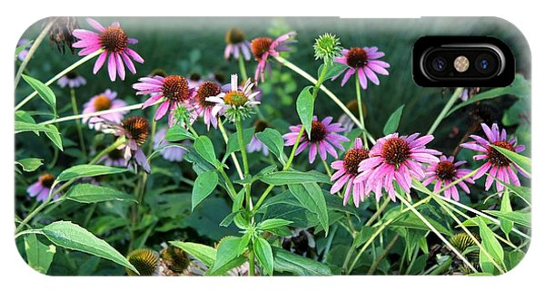 Purple Coneflowers Phone Case by Theresa Willingham