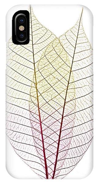 Tint iPhone Case - Skeleton Leaves by Elena Elisseeva