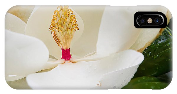 Southern Icon IPhone Case