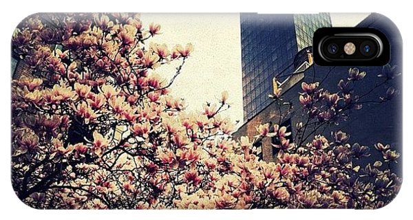 Spring iPhone Case - Spring In Manhattan by Natasha Marco