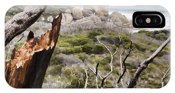 Wilsons Promontory iPhone Case - The Death Of A Tree V2 by Douglas Barnard