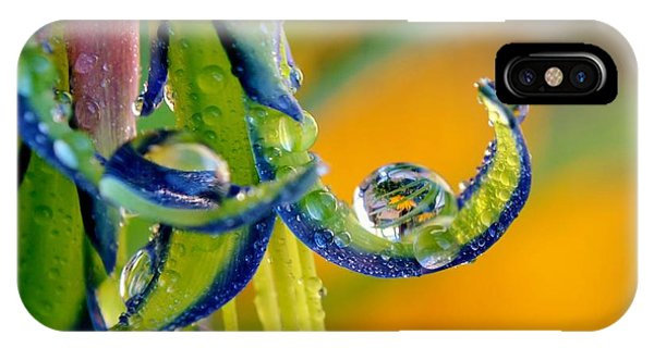 Billbergia Nutans Queen's Tears IPhone Case