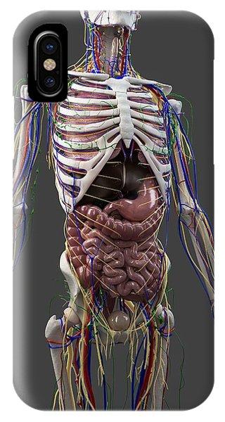 Human Anatomy, Artwork Phone Case by Sciepro