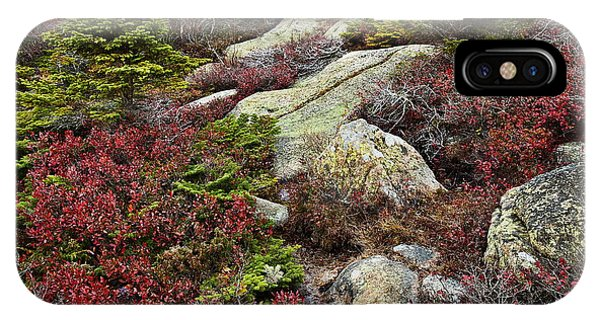 Rocky Mountain Np iPhone Case - Acadia National Park by John Greim