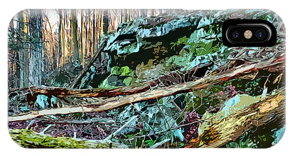 Catoctin Mountain Park iPhone Case - Catoctin Rock by Stephen Younts
