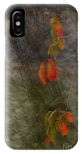 Colours Of Autumn IPhone Case