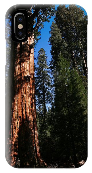 General Sherman Sequoia National Park IPhone Case