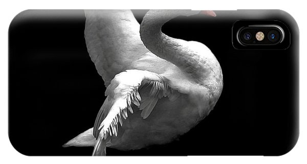 Majestic Swan 2 IPhone Case