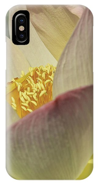 Nelumbo 'pink And Yellow' IPhone Case