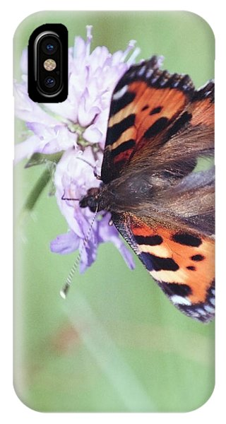 Small Tortoiseshell Phone Case by Patrick Kessler
