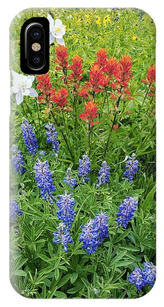 Scarlet Paintbrush iPhone Case - Summer Mountain Flowers by Bob Gibbons