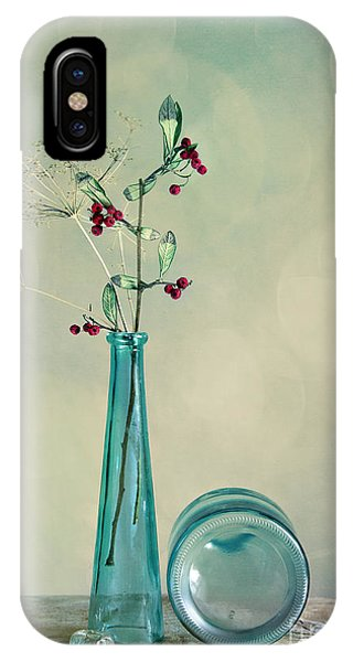 Blue Berry iPhone Case - Autumn Still Life by Nailia Schwarz