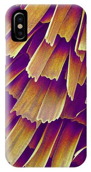 Butterfly Wing, Sem Phone Case by Susumu Nishinaga