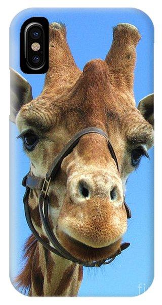 Giraffe Close Up  IPhone Case