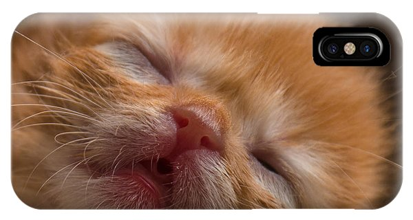 Kitty IPhone Case