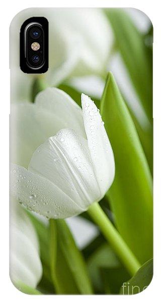 White Tulip iPhone Case - White Tulips by Nailia Schwarz