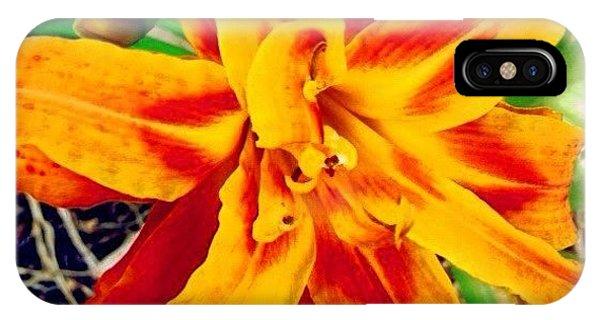 Petals iPhone Case - Instagram Photo by Katie Williams