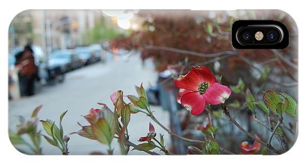 A Dogwood Grows In Brooklyn IPhone Case