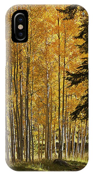 A Golden Trail IPhone Case