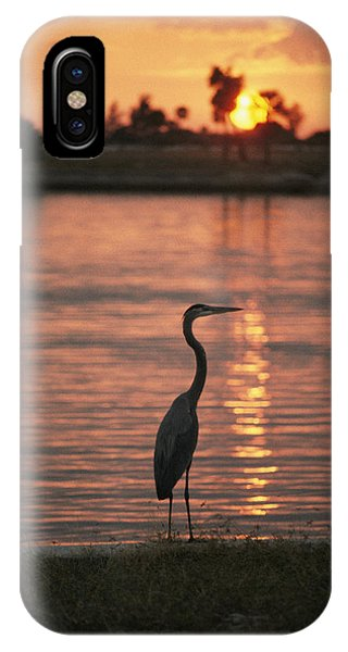 A Great Blue Heron In Silhouette IPhone Case