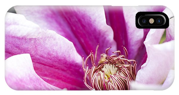 A Passionflower In The Gardens Of Royal IPhone Case