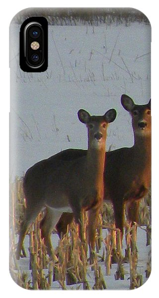 A Perfect Pair IPhone Case