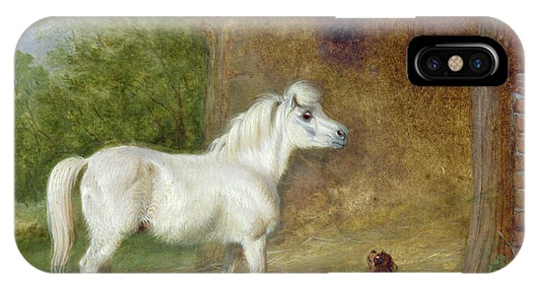 King Charles iPhone Case - A Shetland Pony And A King Charles Spaniel by Martin Theodore Ward