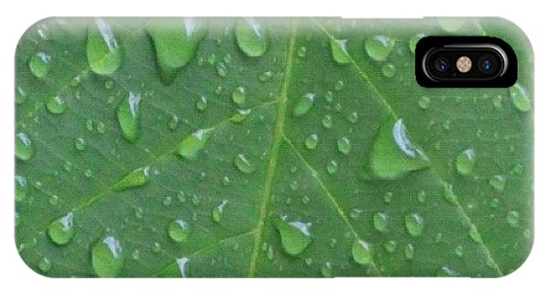 Political iPhone Case - A Tree Leaf Under The Rain, By My Lens by Ahmed Oujan