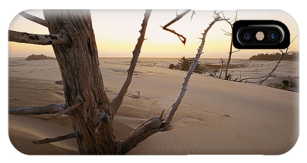 Oregon Sand Dunes iPhone Case - A Twilight View Of Drift Wood by Phil Schermeister