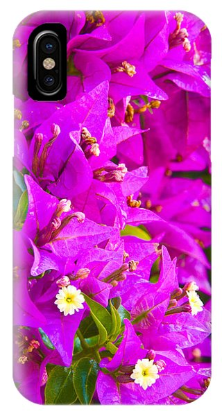 A Wall Of Flowers IPhone Case