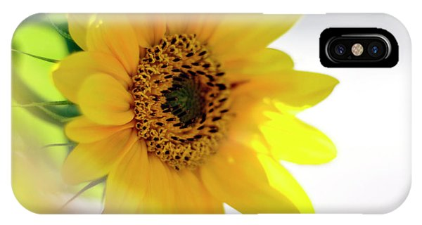A Wish For Sunshine In Your Day IPhone Case