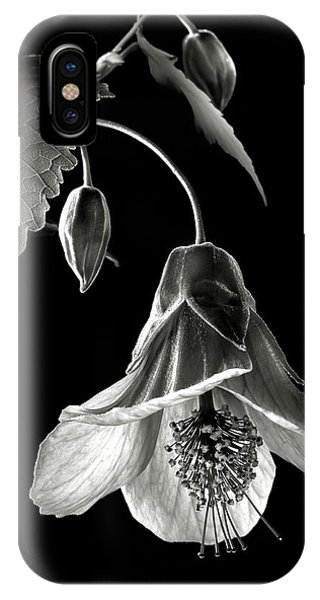 Abutilon In Black And White IPhone Case