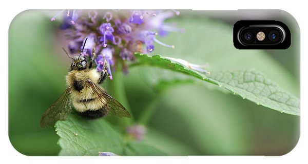 Honeybee iPhone X Case - Afternoon Snack by Susan Capuano