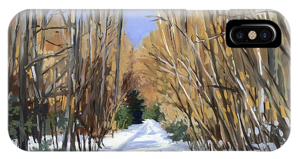 Airline Trail In Winter IPhone Case