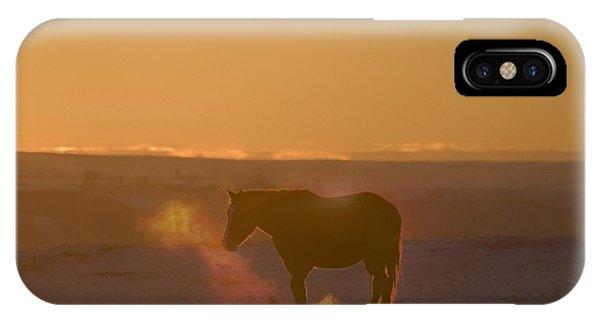 Alberta, Canada Horse At Sunset IPhone Case
