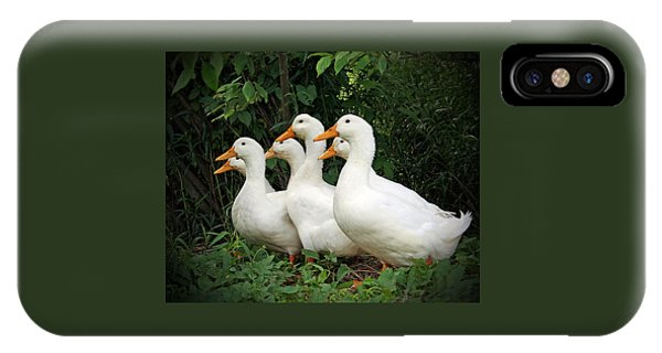 All My Ducks In A Row IPhone Case